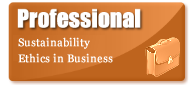 Professional - Sustainability Ethics in Business